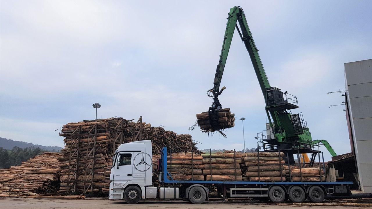 Galicia y Asturias abordan sus desafíos en el foro Encuentros en el Eo.Aspecto de la factoría de ArcelorMittal de Avilés, en Asturias. El mayor grupo siderúrgico del mundo, ArcelorMittal, anunció este lunes que reducirá temporalmente su producción de acero en Europa en tres millones de toneladas en términos anualizados, lo que incluye un descenso de 700.000 toneladas en sus plantas de Asturias.