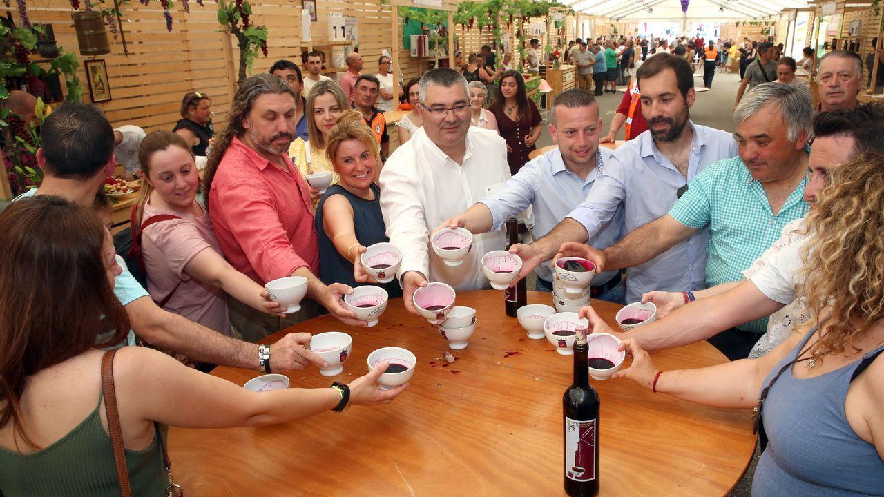 Festa do Viño Tinto de Barrantes