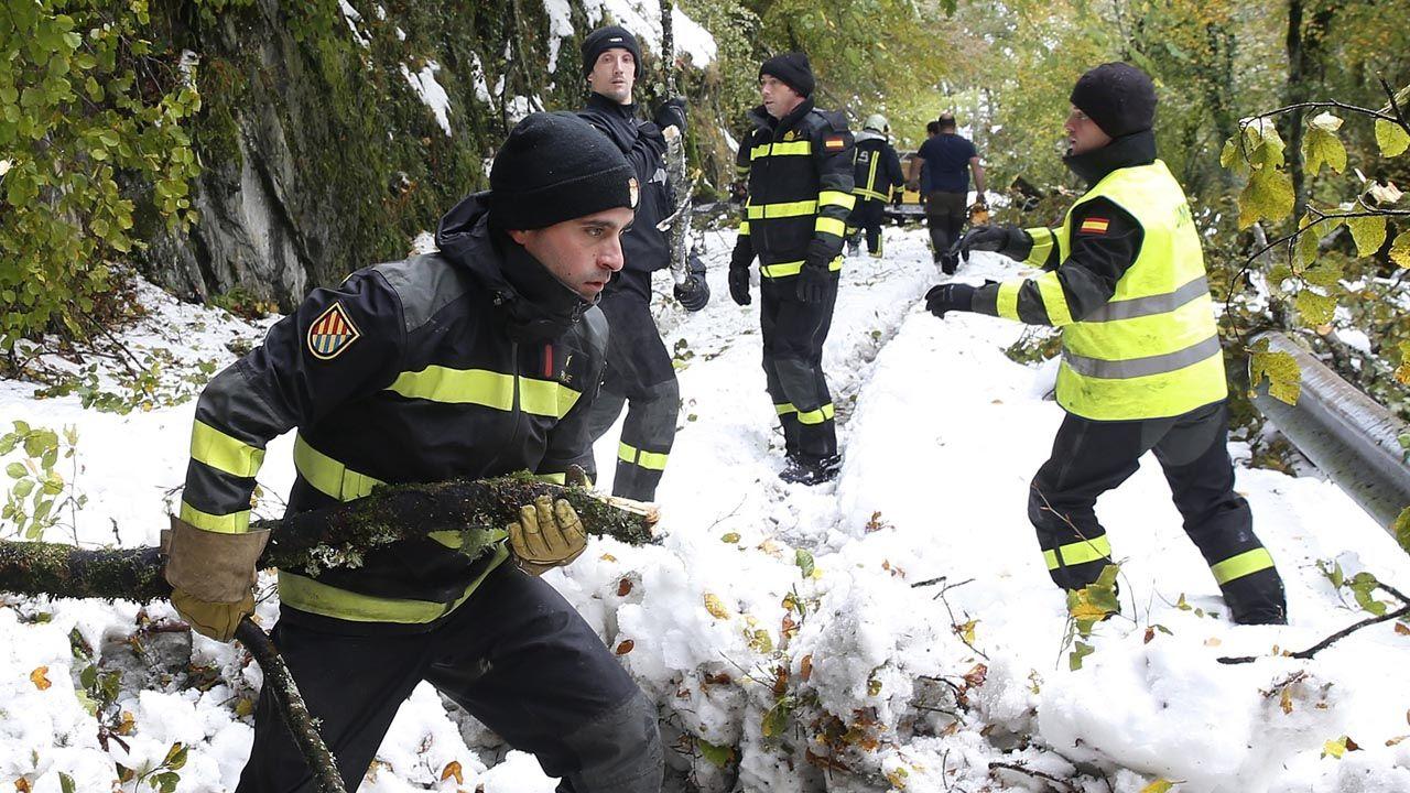 La UME trabajando despejando el camino de nieve y árboles
