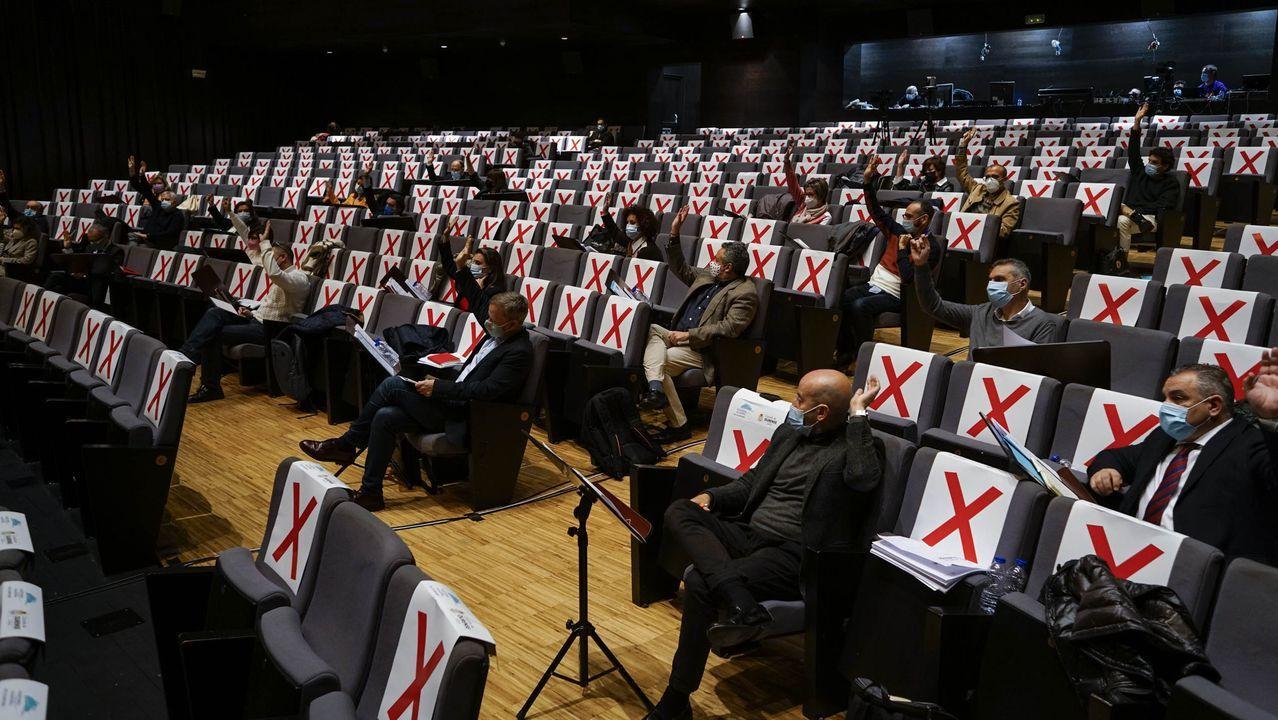 Pleno celebrado en el Auditorio