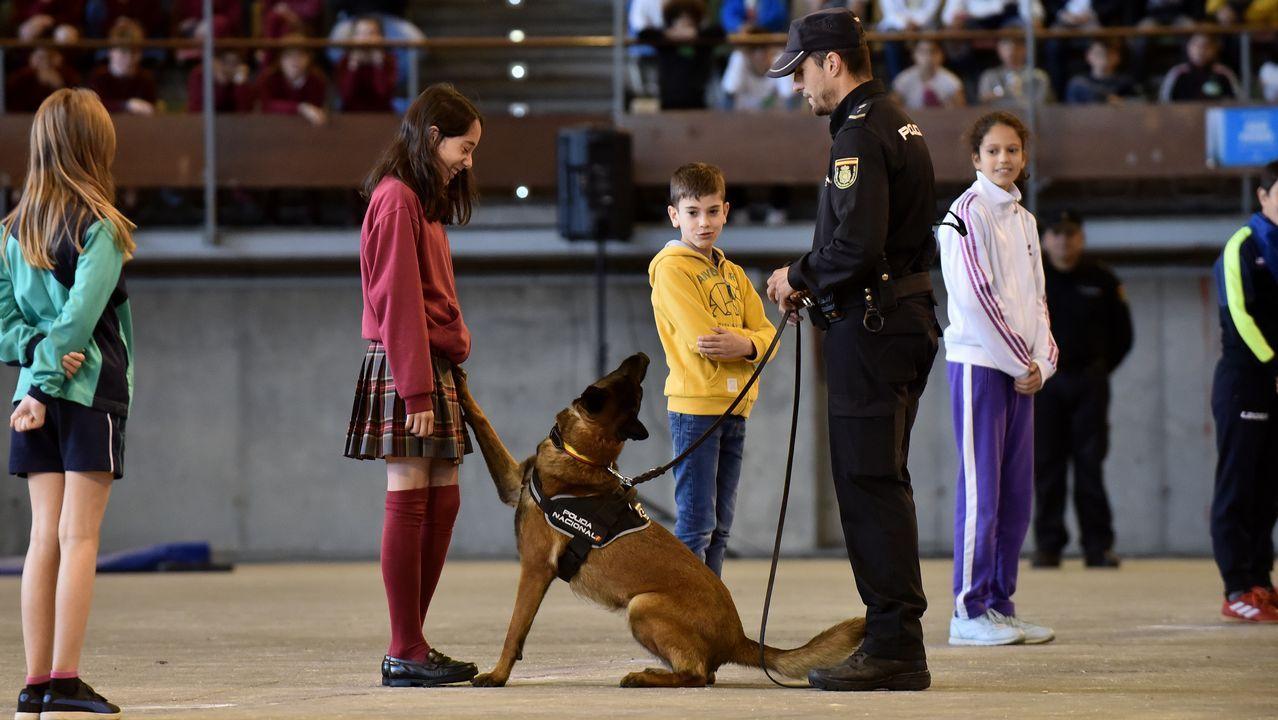 exhibición de Unidades Especiales de la Policía Nacional para 3.000 escolares con guías caninos