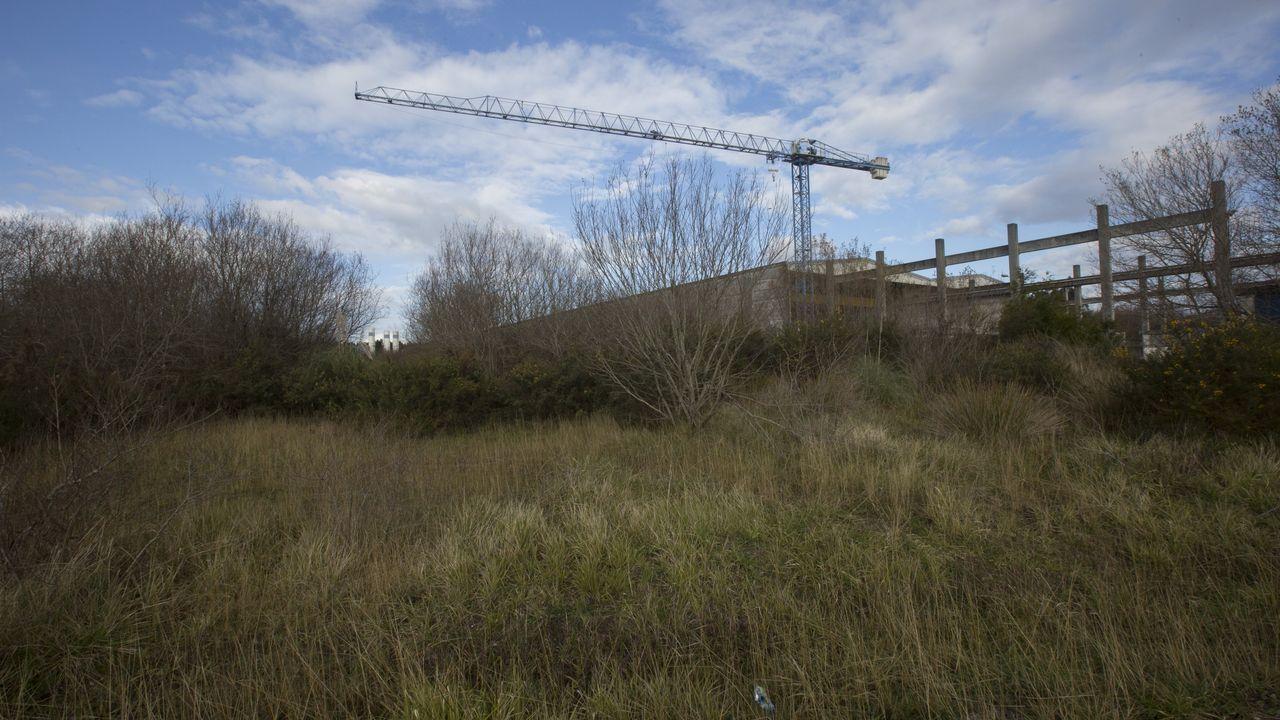 Imagen de archivo de la oficina del DNI.Parte de los terrenos en los que estaba previsto construir el hospital privado