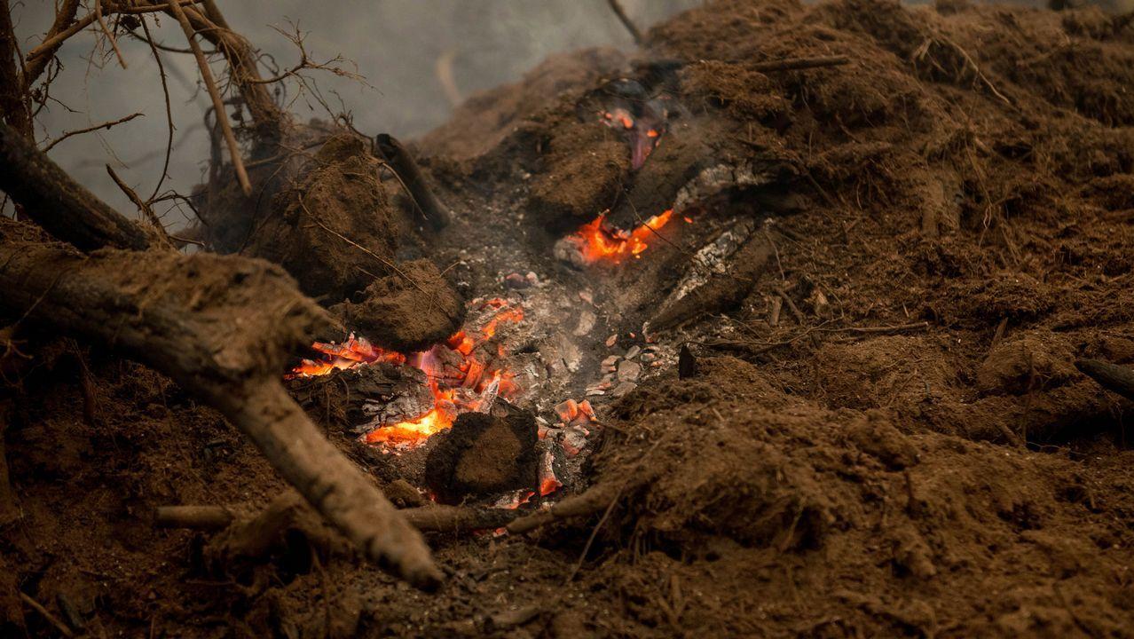 Incendio en el concello de Parada de Sil. Las llamas llegaron a diferentes partes del municipio