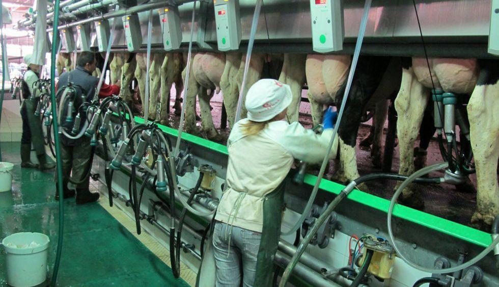 Los ganaderos continúan trabajando a la espera de que se cumplan las condiciones pactadas.