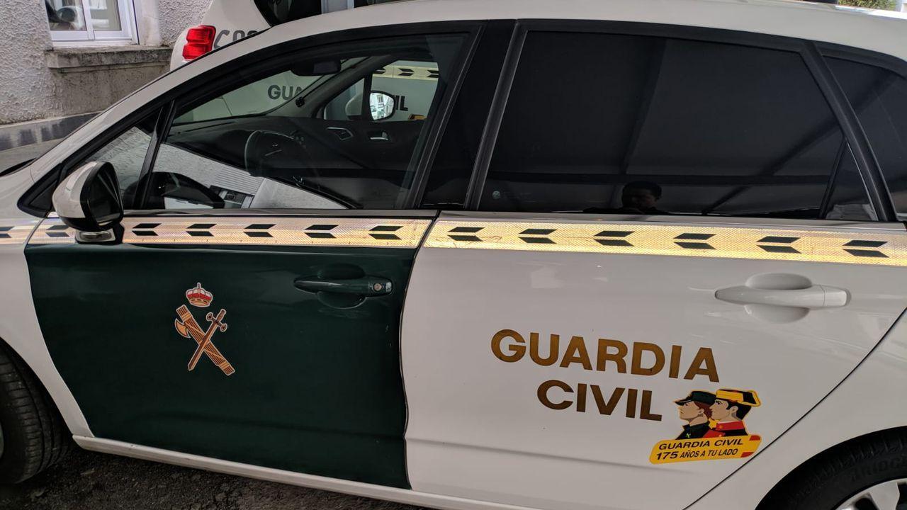 Un ejemplar de rata topera capturado el pasado noviembre en Triacastela