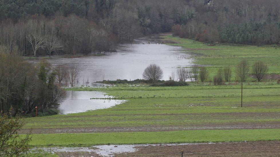 Río Ulla a su paso por Pontevea.
