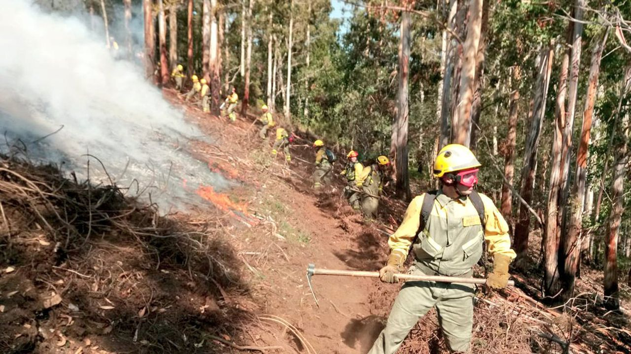 El archivo del Cinema Palacio de Pinzales.Los bomberos forestales de las brigadas de incendios forestales de Tineo y bomberos de Asturias se esfuerzan por controlar el perimetro en ataque directo con batefuegos y herramienta manual en el fuego registrado en Villagrufe, Pola de Allande