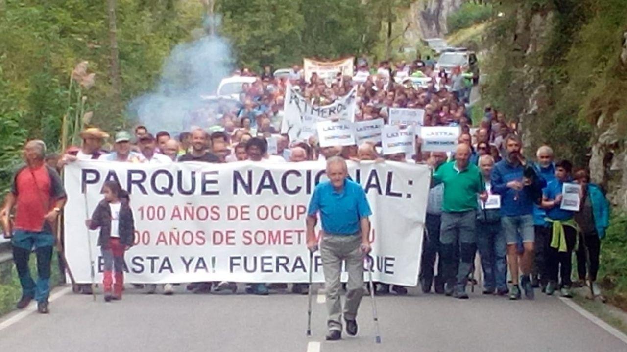 Manifestación contra el lobo en Cabrales
