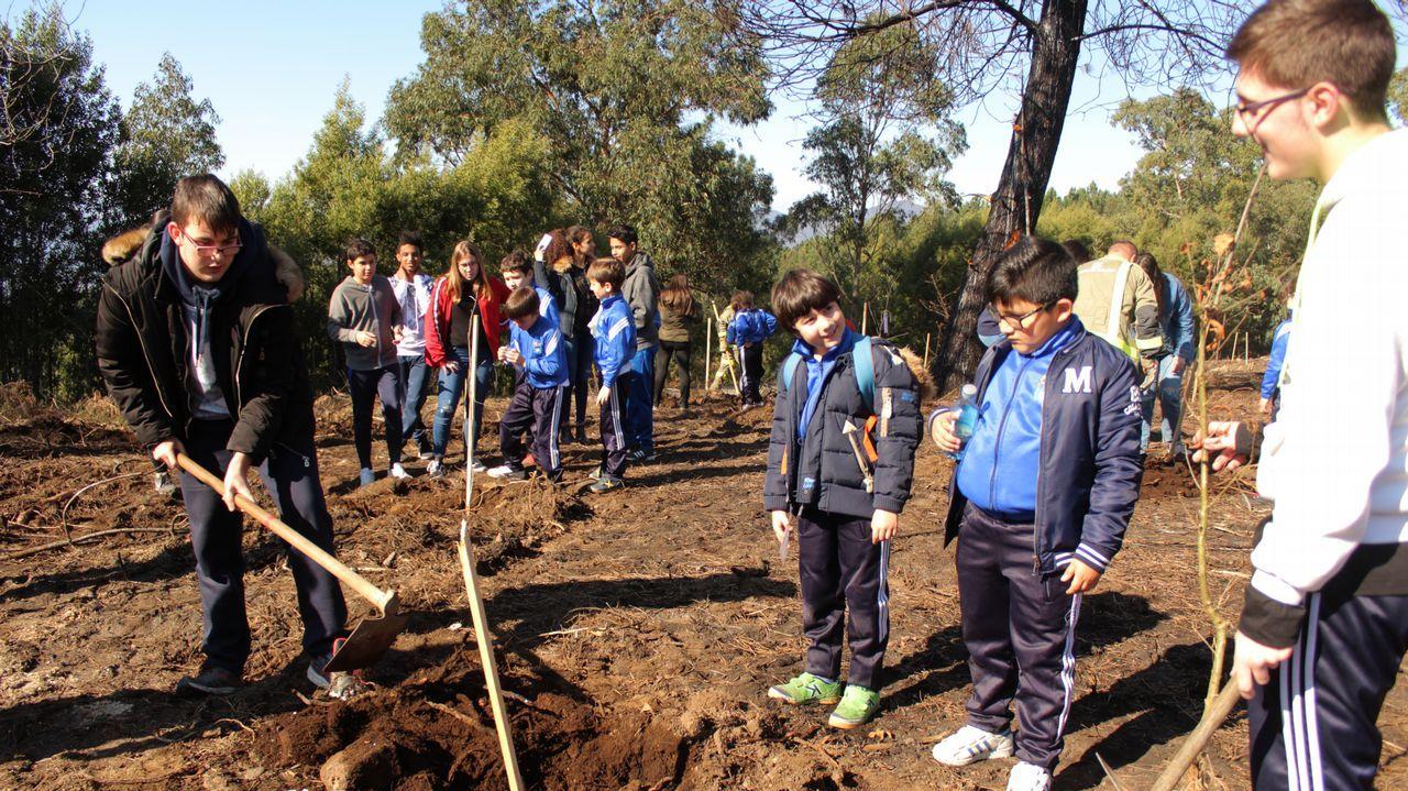 Los estudiantes del Nuestra Señora del Carmen, de Fisterra, se echan al monte en el Día Internacional del Árbol.Conecta Fiction celebró el año pasado su primera edición