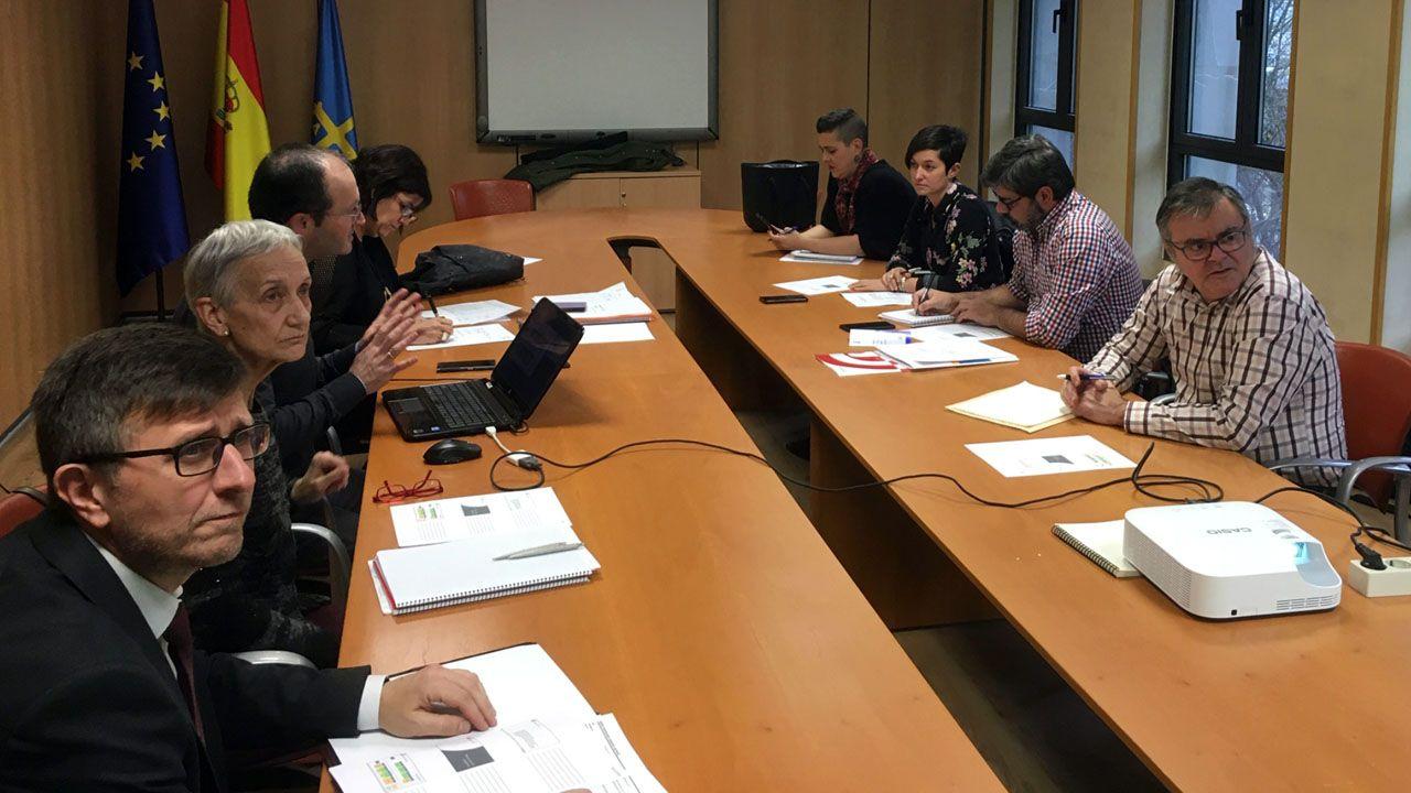 La consejera de Educación, Carmen Suárez, durante una reunión del Consejo de la Formación Profesional, en el que se analizó la FP dual, con contrato de aprendizaje