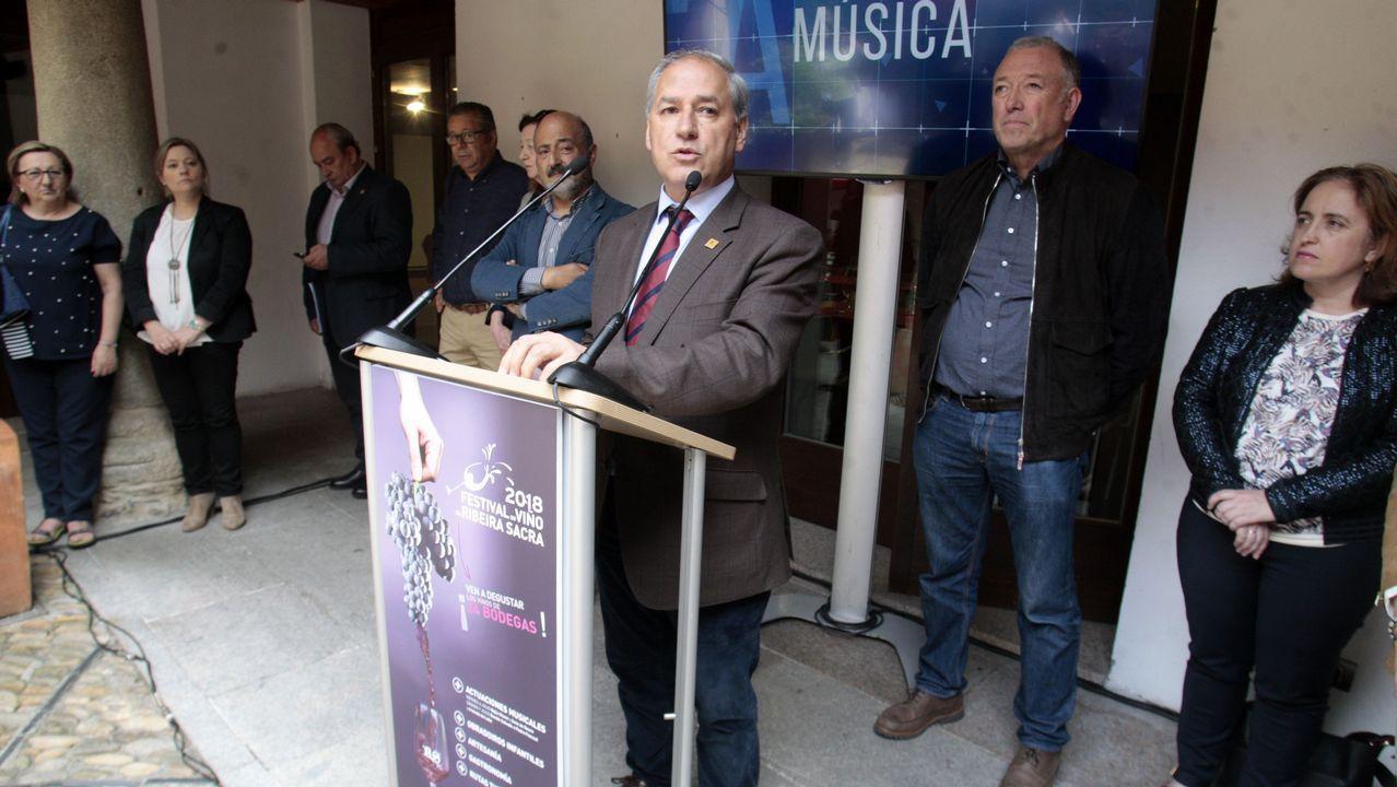 «Daré mi opinión en los plazos que marque el congreso del PP»