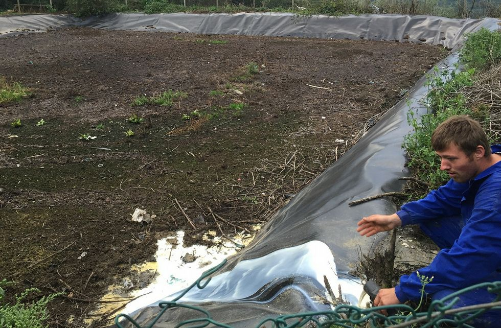 <span lang= gl >«Aquí nos atoparán os que incumpran o acordo»</span>.Una granja de Toques vierte a una fosa séptica cerca de 3.000 litros de leche cada día.