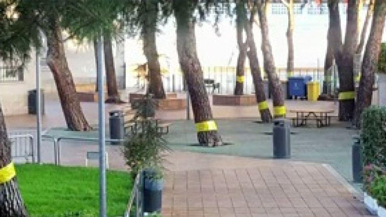 Iceta matiza: «A Cataluña no le conviene la independencia y un referéndum no es la solución».El ministro del Interior, Fernando Grande-Marlaska, durante su comparecencia hoy en el Congreso para explicar los saltos a la valla fronteriza de Ceuta durante este verano por parte de inmigrantes, la política de acercamiento de presos de ETA y el cese del coronel jefe de la Unidad Central Operativa (UCO) de la Guardia Civil