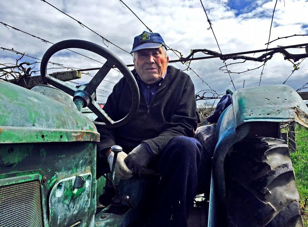 Daniel Casalderrey, natural de Portas, ayer, a bordo de su tractor en sus viñedos de Baión.