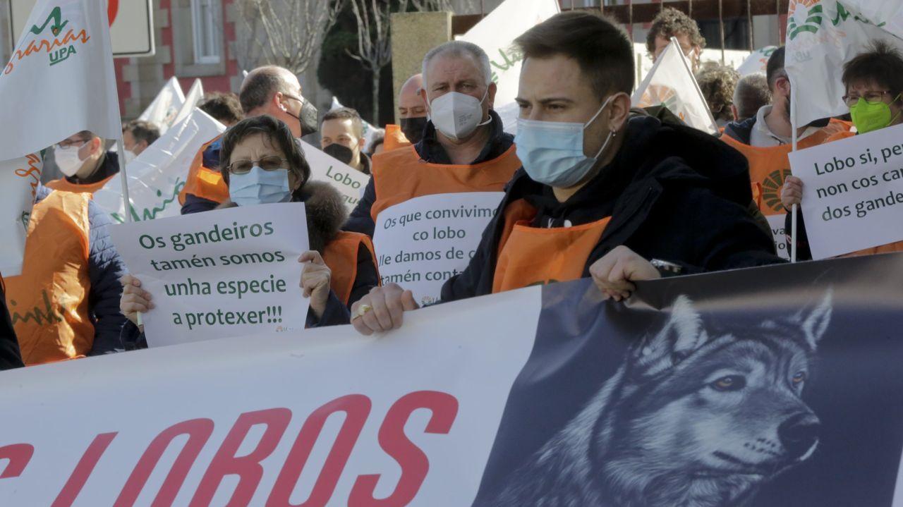 Las imágenes del Foro Voz Ribeiras do Anllóns en O Couto.Imagen de archivo de una manifestación en A Coruña para reivindicar compensaciones por convivir con el lobo