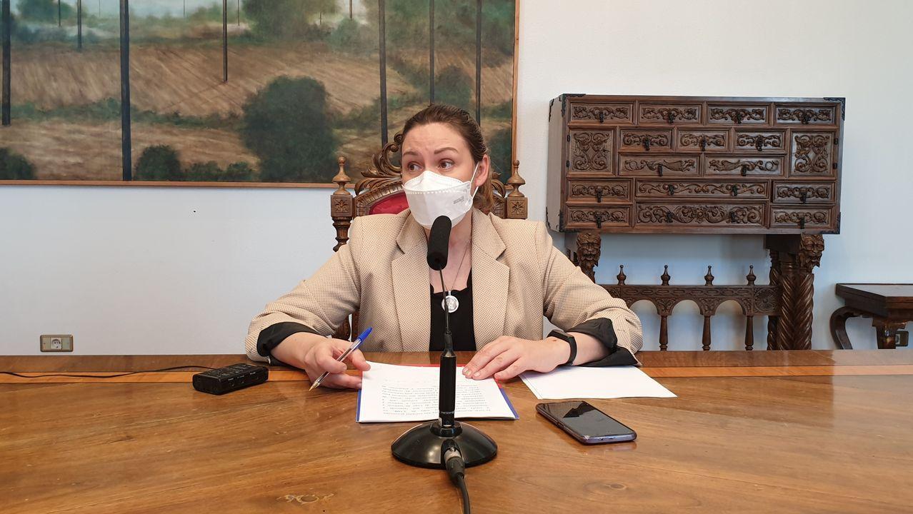 Pilar García Porto, portavoz del PSOE de Lugo en la Diputación