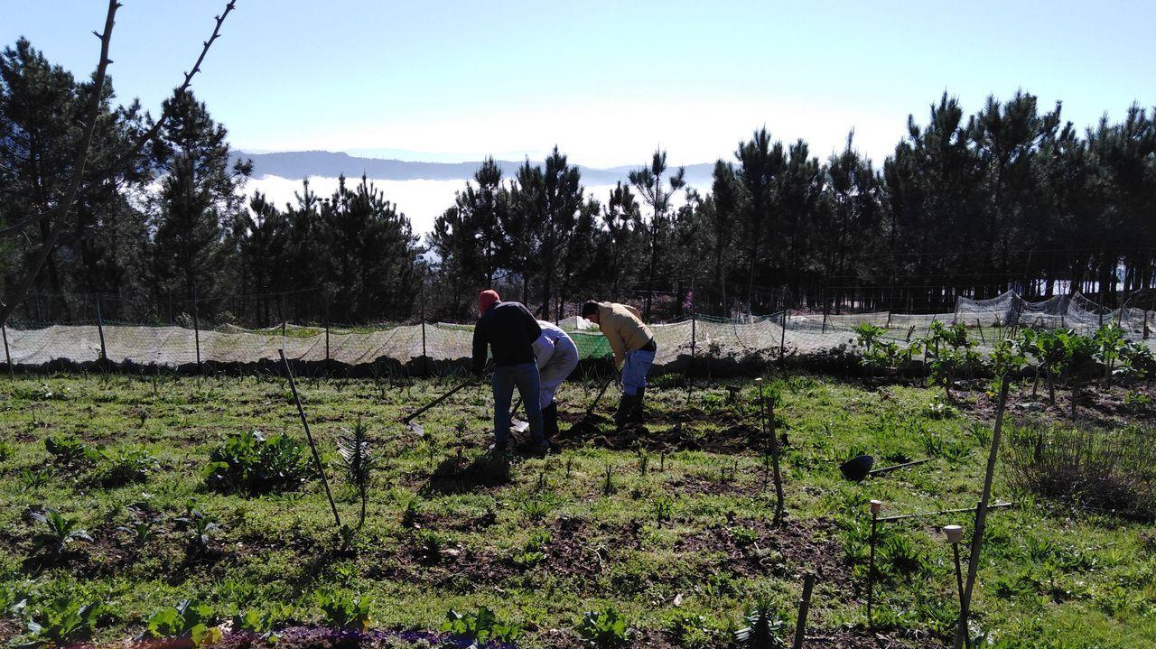 Alumnos de la rama de soldadura trabajaron en la construcción del invernadero