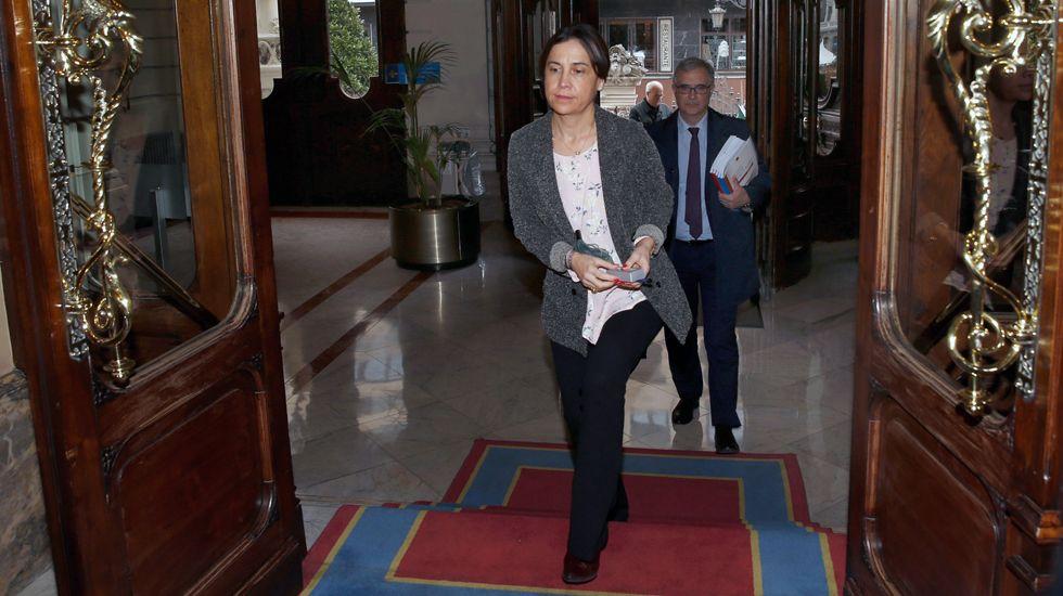 La consejera de Hacienda, Dolores Carcedo, entra en la Junta General del Principado con el proyecto de presupuestos para 2017.La consejera de Hacienda, Dolores Carcedo, entra en la Junta General del Principado con el proyecto de presupuestos para 2017