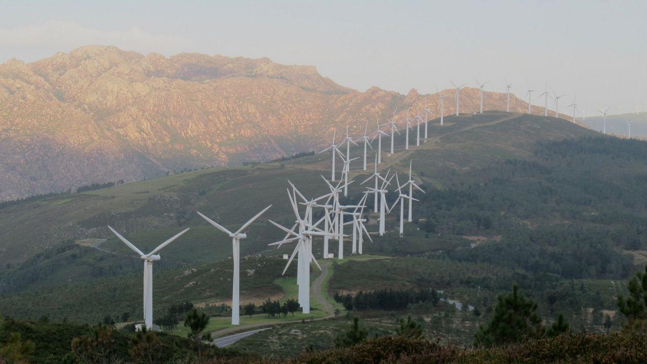 Parque eólico de Paxareiras