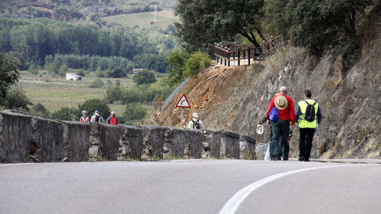 Un paseo por los parques naturales de Ourense.Imagen de la Feira do Viño del 2019