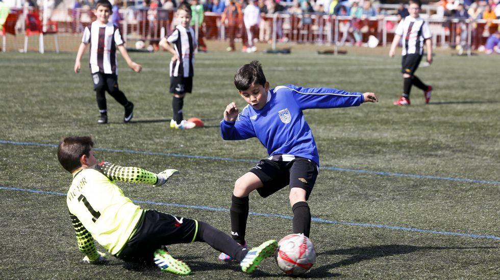 El Torneo de Cariño de fútbol 8 finalizó el domingo