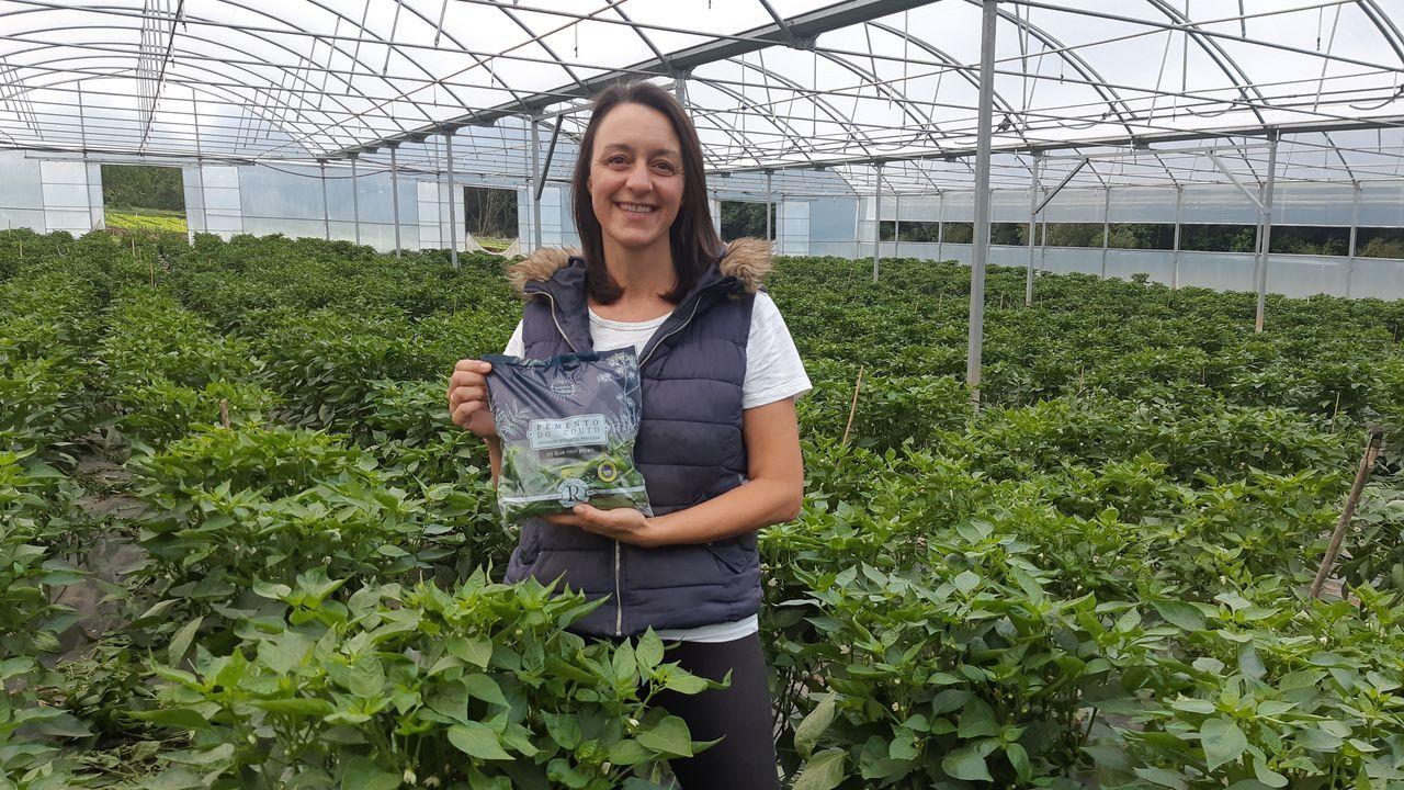 Marta Novoa Fernández tiene una plantación de 8.500 metros cuadrados en los que cultiva pimientos, tomates y lechugas