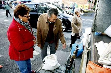 La Feira das Fabas llena Ponteceso de sabor.Un solo tratante acudió ayer a Baio para adquirir fabas asturianas plantadas en la zona.