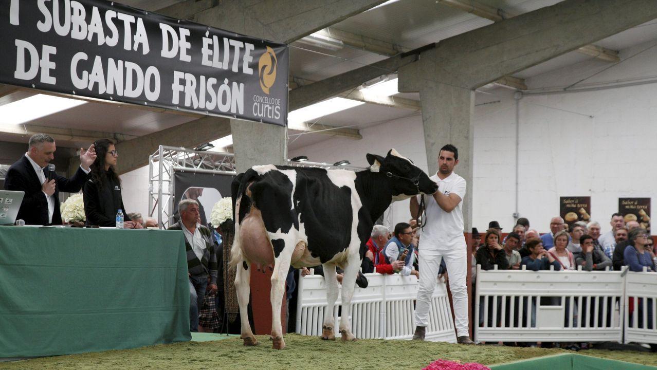 El Esmorga Fest se presentó hace unos días en la Diputación