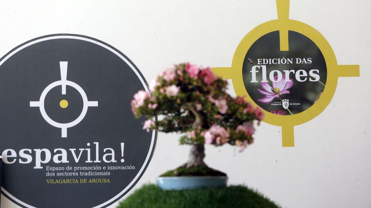 Espavila! enche de flores e cor Vilagarcía.Los conciertos de la Ascensión, en Santiago, fueron de los primeros de la temporada