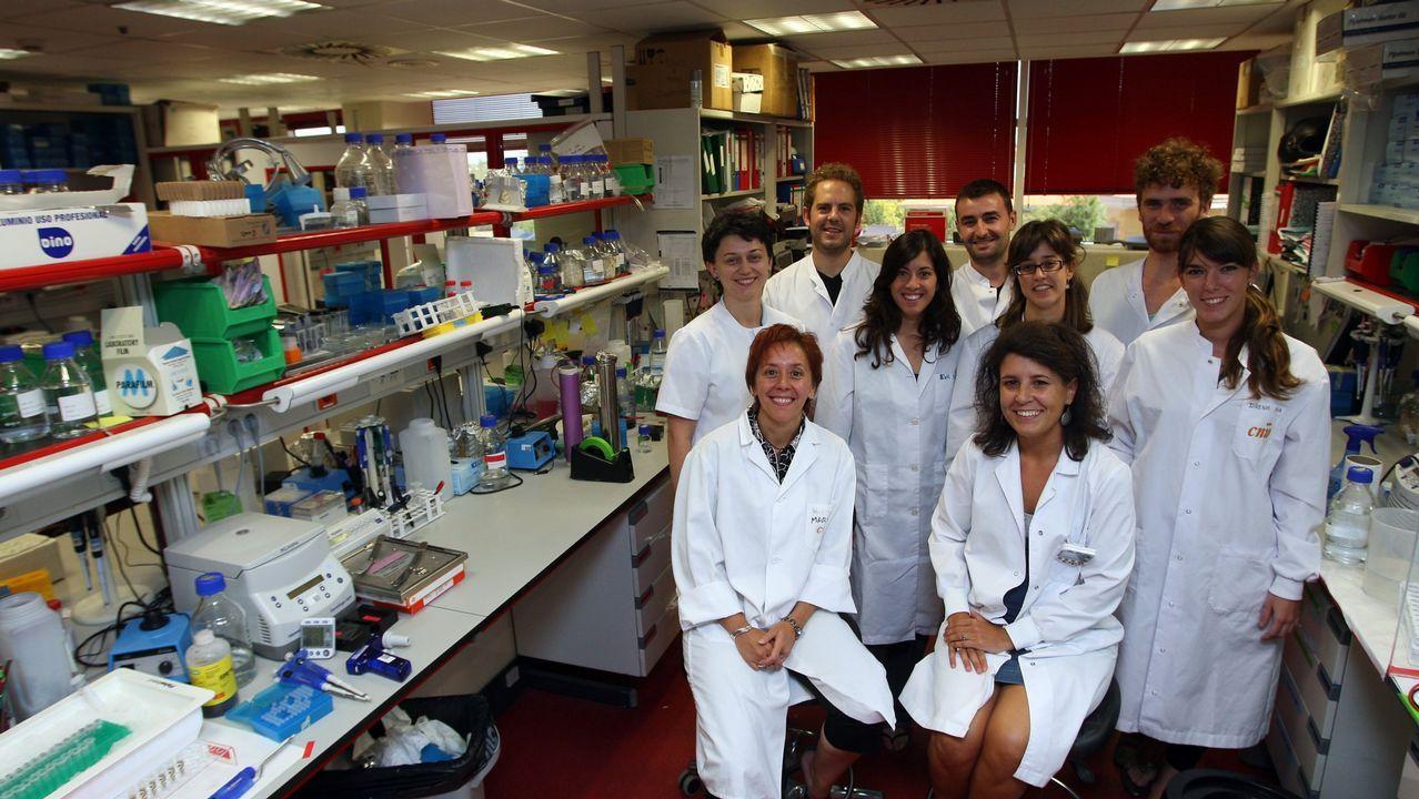 El equipo del CNIO dirigido por Marisol Soengas