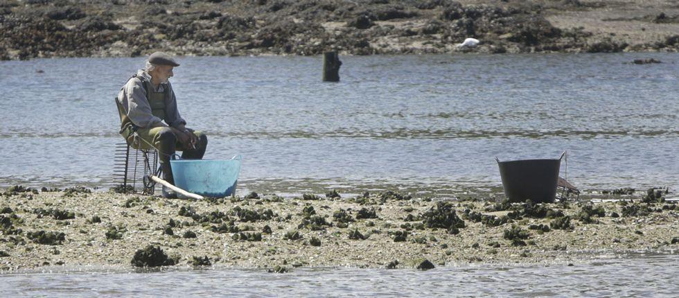 La ría de O Burgo lleva cerrada al marisqueo desde el pasado 7 de marzo por presencia de hidrocarburos.