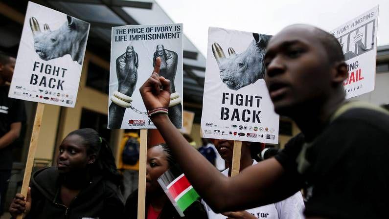 La devastadora situación de los niños refugiados.Ciudades de todo el mundo, como Nairobi, en Kenia, se sumaron a la marcha global por los elefantes y rinocerontes