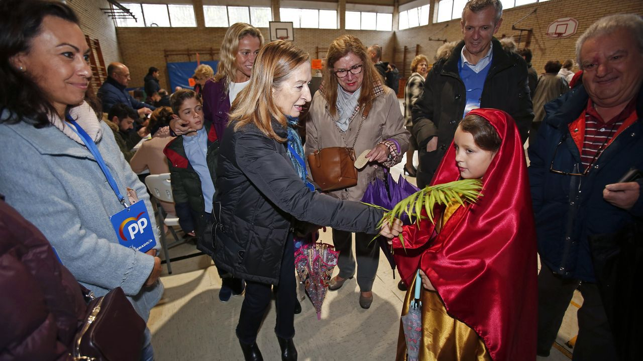 Las elecciones en Pontevedra en imágenes