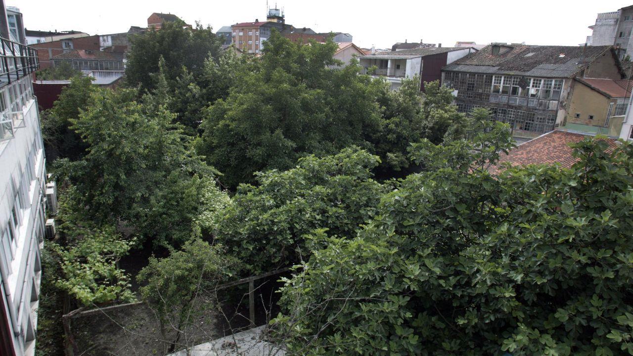 Traseras de viviendas de las calles Inés de Castro (izquierda) y Cardenal (derecha) colindantes con los terrenos