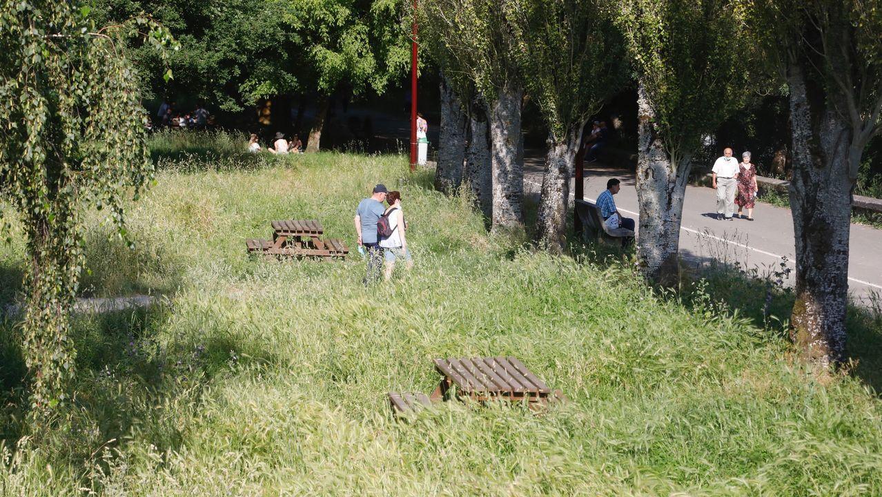 Así están los parques infantiles de Lugo en vísperas de su reapertura.El Paseo Fluvial se encuentra estos días lleno de hierbas