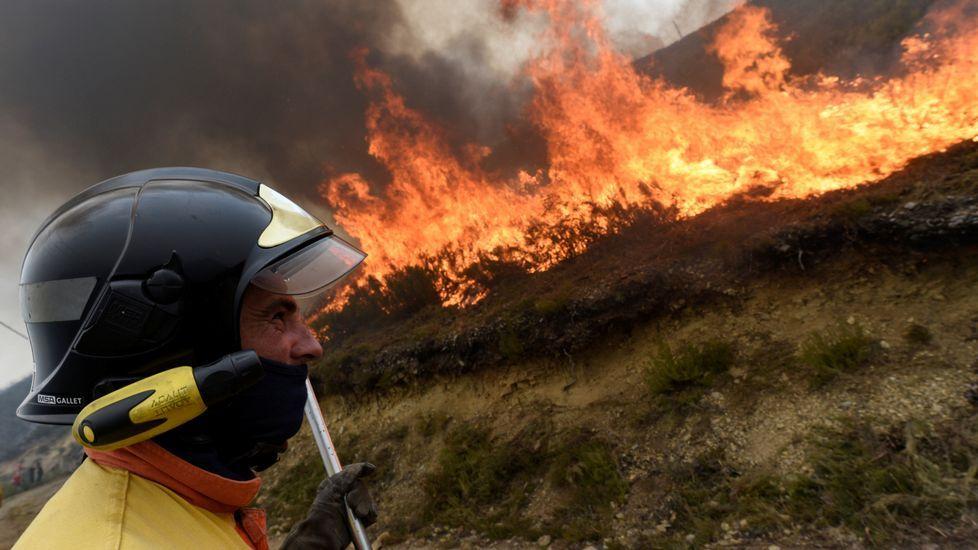 Asturias registra hoy hasta 32 incendios forestales que han obligado ya al desalojo de tres pequeñas localidades de Cangas del Narcea