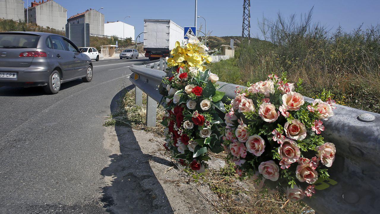 De camino al polígono de Sabón, en Arteixo, se renuevan flores cada poco