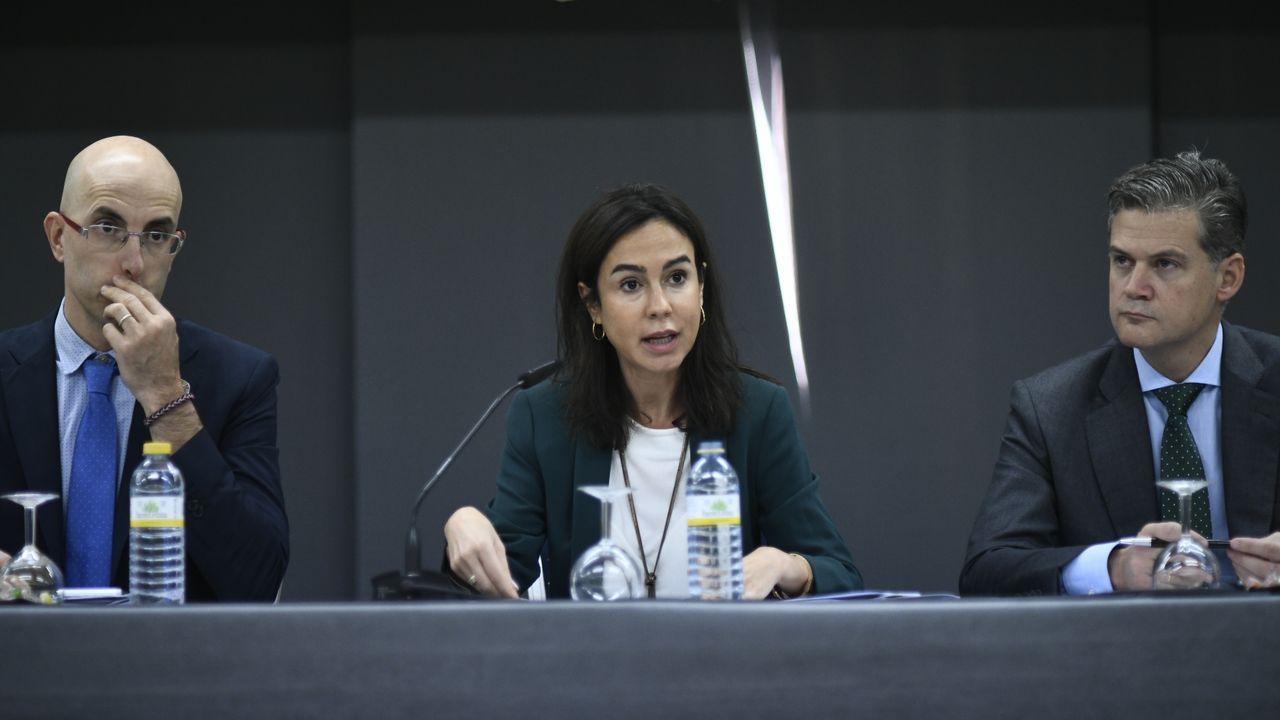 La presidenta del ADIF, Isabel Pardo de Vera, en la rueda de prensa en la que presentó las compañías que competirán con Renfe