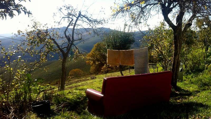 Carrito.En Boimente, Santa Comba, se encuentra este curioso ejemplar de marquesina, sin duda la especie más polimorfa del rural gallego
