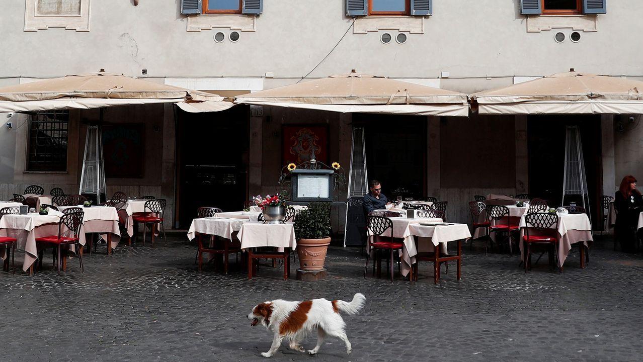Un perro pasa por delante de un restaurante vacío en el el barrio bohemio de Trastévere, en Roma.