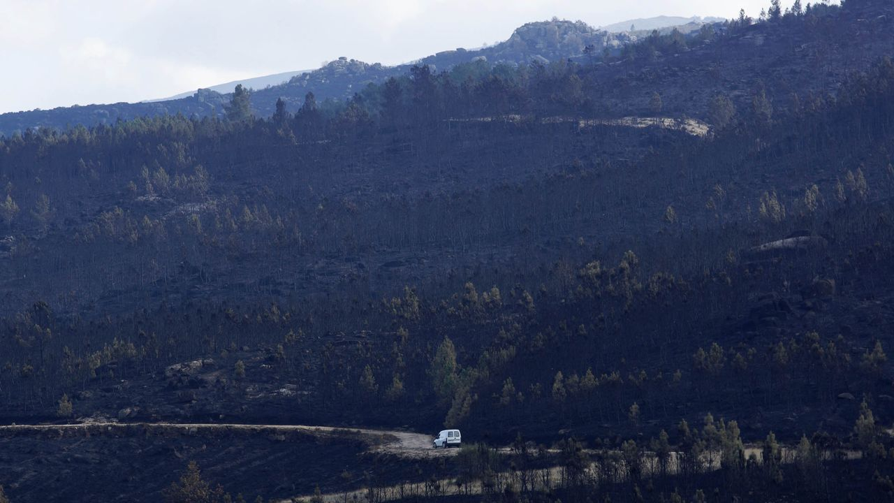 Los medios de extinción trabajan en Vilariño de Conso.El CRA Amencer de Ribadavia tiene 13 alumnos más que el curso pasado