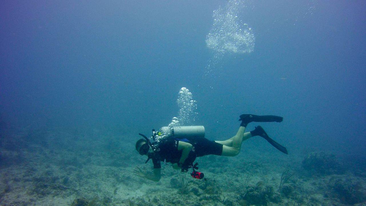 basura, fondo del mar, buzos, residuos, basuraleza.Submarinista