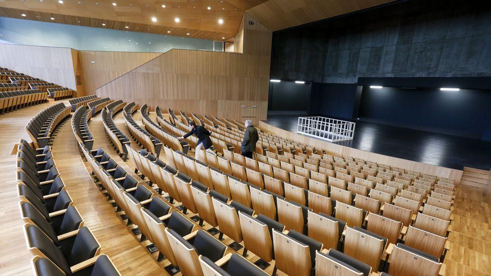 Así es el nuevo auditorio de Lugo.La protesta en la capital de Texas, Austin, fue una de las más multitudinarias