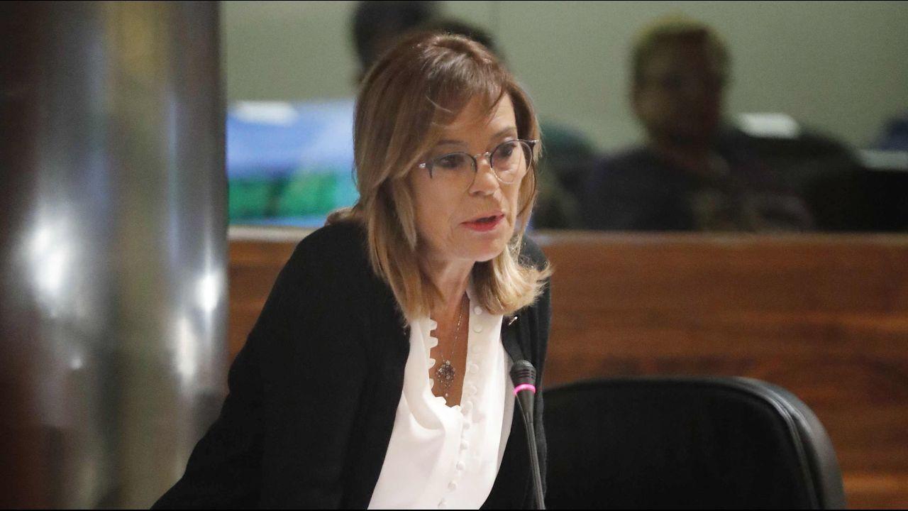 La consejera de Cultura del Principado en la Junta General  .La portavoz de IU en el parlamento asturiano, Ángela Vallina