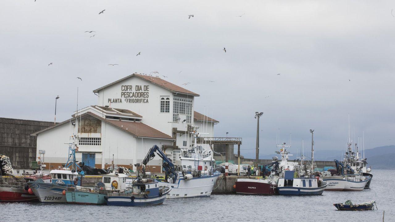 Primer domingo de fase 1 en Galicia: nadie se queda en casa.Puerto de Malpica