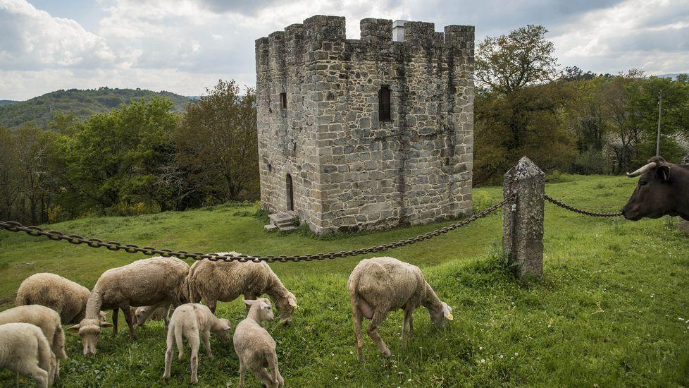 Los orígenes de la torre de A Candaira se remontan al siglo XII