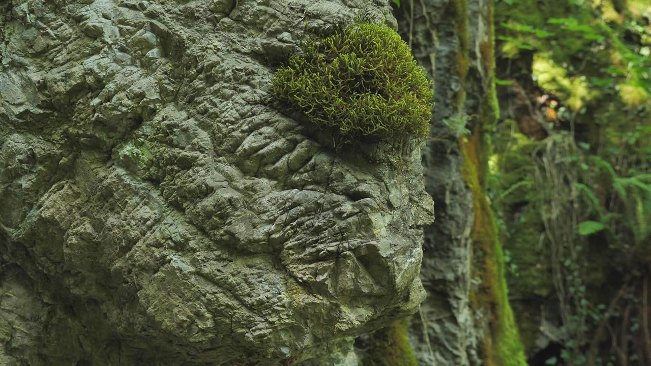 El desgaste de la caliza, mineral soluble al agua, provoca formas kársticas, que llegan a asemejar las rocas a estalacticas de hielo
