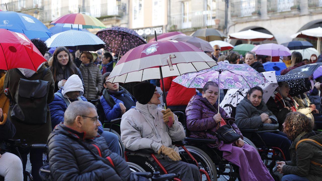 Así se celebró en Ourense y O Barco el Día Internacional de la Discapacidad.Perros custodiados en el refugio de animales de Quiroga, el único municipal de la provincia de Lugo