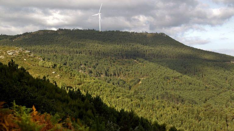 Aprobado el plan que regirá la estrategia forestal gallega hasta el 2040