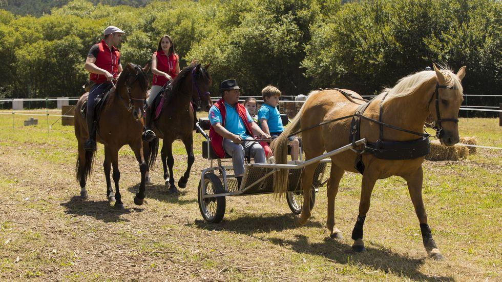 La Feira-Exposición-Paseo do Cabalo de Ponteceso, ¡en imágenes!.Algo tan sinxelo como botar os envases de plástico nos contedores amarelos pode ser vital para a preservación do medio ambiente